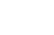 Wild Mage Games logo
